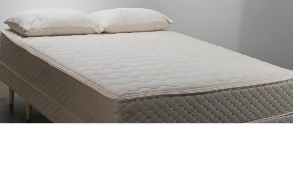 FloBeds Mattress Customized Firmness for both sides