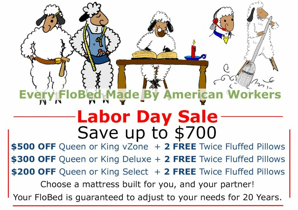 SAVE $700 - $500 OFF VZONE, 300 OFF DELUXE, 200 OFF SELECT PLUS 2 FREE PILLOWS